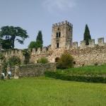 castellaro-lagusello 3