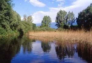 riserva naturale wwf le bine